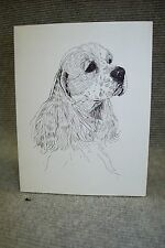 Cocker Spaniel Pen and Ink Stationary Cards, Note Cards, Greeting Cards.10 pack.
