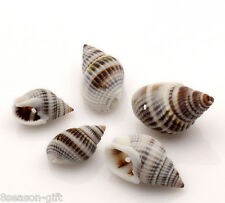 250PCs Natural Spiral Shell Loose Beads 28x16mm-16x9mm