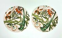 "The Haldon Group ""The Parrots"" Set of 2 Dinner Plates Gift Quality 10.25"""