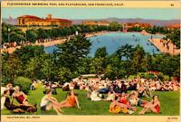 Vintage 1940's Fleishhacker Swimming Pool San Francisco California CA Postcard