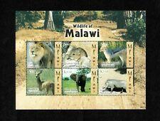 MODERN GEMS - Malawi - 2009 - Wildlife of Malawi - Sheet of Stamps - MNH