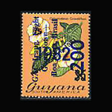Guyana, Sc #556, MNH, 1982, Flora, Flowers, Odontadenia Grandiflora, A250