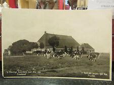 cpa nederland holland pays bas keurige boerderij met dito vee friesland troupeau