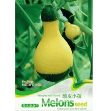 FD1431 Lovely Cute Gourd Seed Vetable Seed ~1 Pack 10 Seeds~ Cute Gift
