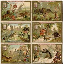 Chromo Liebig Sang. 234 ITA Caccia in Paesi Diversi ANNO 1889