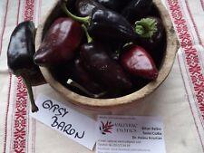 Gypsy Baron Paprika - 5+ seeds - SWEET and PURPLE!