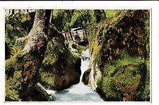CPA-Carte postale-Luxembourg- Muellerthal- Partie de la Hallerbach-VM1531