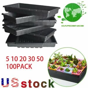 """Plant Growing Trays 10""""x 20.75""""Perfect Garden Seed Starter for Seedlings soil US"""