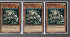 Yugioh Cards - Playset Of 3x Hunter Owl SDDL-EN013 1st Ed