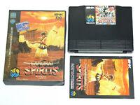 Samurai Spirits Shodown SNK Neo Geo AES ROM Video Game
