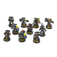 SPACE WOLVES 10 Wolf Guards or grey hunters #3 WELL PAINTED Warhammer 40K guard
