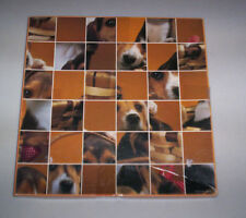 Springbok A Puzzle of Puppies over 500 pieces Grand Master Series jigsaw PZL3604