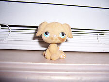 RARE  Littlest Pet Shop Brown Fuzzy Flocked Dog LPS Hasbro E