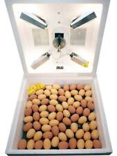 Incubator for 80 eggs with membrane thermostat