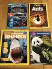 Children%E2%80%99s+Books+Of+Sharks%2C+Ants+And+Pandas+lot