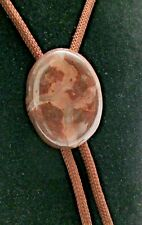 Vintage Western Bolo Tie Brown Plastic Marbled Pendant Nylon Cord Gold Tone Ends