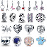 New 925 Sterling Silver Charms Fit European Bracelets Multiple Design DIY Beads