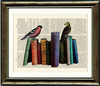 Antique Book page Art Print - Vintage Birds on Old Books Dictionary print