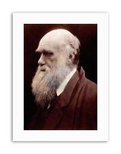 Cameron NATURALISTA Charles ROBERT Darwin Ritratto STAMPE SU TELA ART