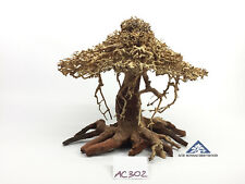 Bonsai Driftwood Tree for Aquarium Moss Fish Shrimp Planted Tank -Size L- AC302
