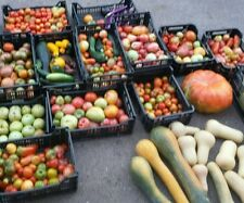 ☺10000 graines. 20 sachets de graines de légumes differents y/c porte greffe