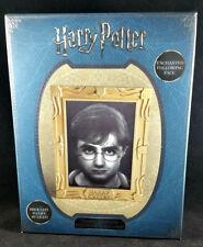Harry Potter Holopane Mood Lamp