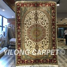 Yilong 4'x6' Flooring Handmade Carpets Hand Knotted Classic Silk Area Rug W244C