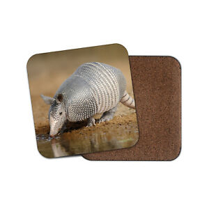 Texan Armadillo Desert Coaster - Zoology Animals Fun Cool Cute Zoo Gift #15712