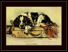 Picture Print English Springer Spaniel Puppy Dog Dogs Vintage Poster Art