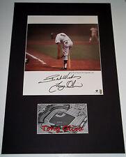 TONY OLIVA Signed Rare Photo Matted Display with Custom Nameplate Twins GAI