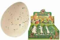 Hatching & Growing Dinosaur Egg 8cm Magic Party Loot Bag Childrens Water Toy Set