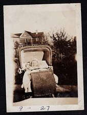Antique Vintage Photograph Adorable Baby Sleeping in Wicker Carriage in Yard