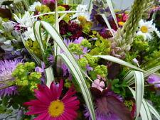 Blumen-Bienen-Blühende - Wiese bunte Mischung Samen bis 30 Sorten 1Portion
