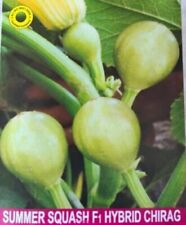 Semillas de vegetales