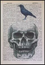 Vintage Skull & Bird Print Dictionary Page Wall Art Picture Hipster Steampunk