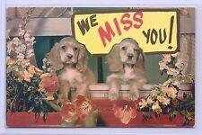 Vintage Pet Puppy Dogs Cocker Spaniel Pups We Miss You Postcard Plastichrome