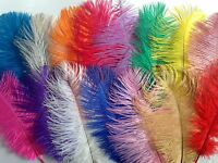 "Ostrich Feathers Plumes Craft Millinery 8"" - 12"" Long - Choice of Colours"
