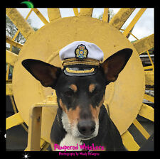 """Captain Hat hat for dogs with 14-16"""" collar size"""