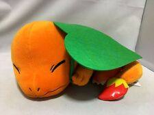 New Pokemon Big plush / Charmander / BANPRESTO / 2017 / Japan official doll