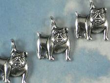12 Bulldog Charms 17mm x 13mm Dog Antiqued Silver Tone Cute Pet Charm  #P731