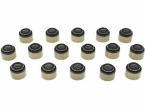 Intake and Exhaust Valve Stem Seal Kit 7GSP72 for Workhorse P30 2000 2001 2002