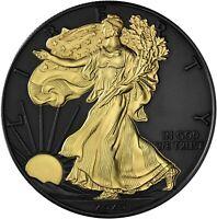 USA 1 Dollar 2020 Silver Eagle Black Ruthenium Edition