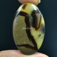 Cts. 31.05 Natural Madagascar Dragon Septarian Cabochon Oval Cab Loose Gemstone