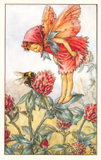Flower Fairy Postcard: Smiling Fairy with Scarf Watches Bee on Red Clover
