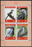 Chad 2019 CTO Calao Hornbills Hornbill 4v M/S Birds Stamps