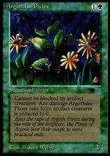 Argothian Pixies MTG MAGIC ATQ Antiquities English NM