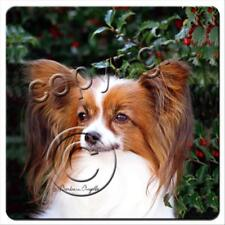 Papillon Brown White Dog Rubber Backed Coasters Set of 4