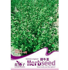 Fd1268 Common Origanum Majorana Seed Chinese Herb Seed *1 Pack 50 Seeds*