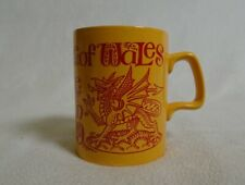 The investiture at Caernarvon Prince of Wales mug 1969 Staffordshire pottery