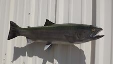 "29"" Steelhead Trout Two Sided Fish Mount Replica"